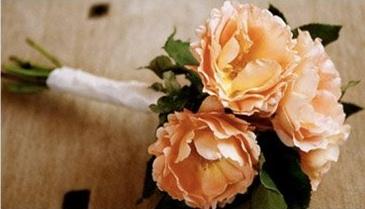 Green Wedding Shoes Peach Flowers