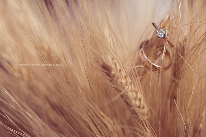 Rings on Wheat