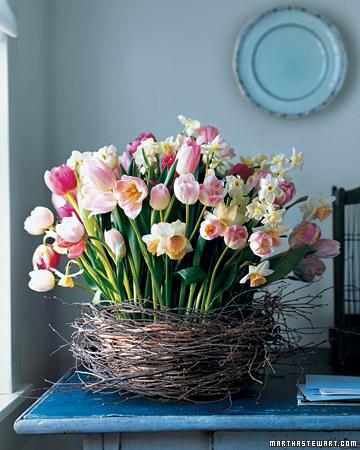 tulips-martha