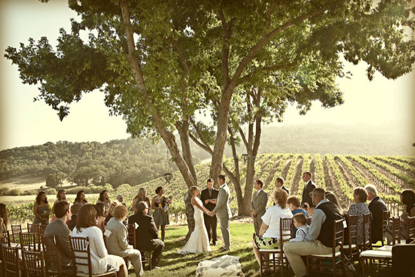 Inspired by my wine country wedding inspired by this for Local venues for weddings