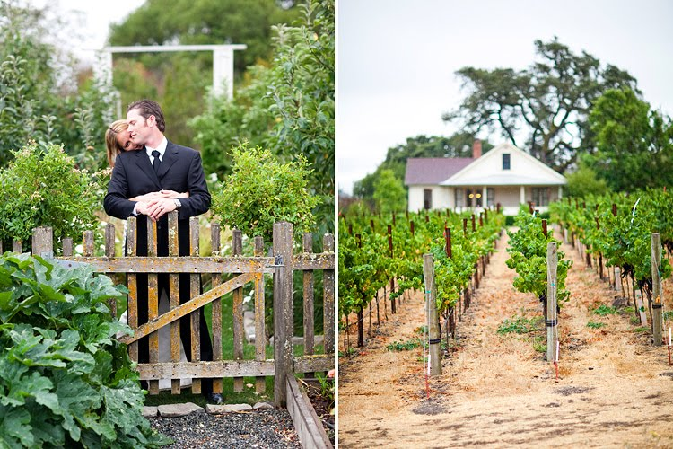 Backyard Vineyard Design : Backyard vineyard wedding