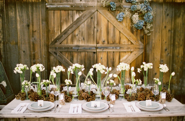 Inspired by these wedding pine cones and acorns