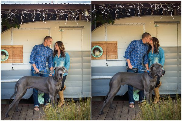 ENGAGEMENT - Zoom Theory great dane-001