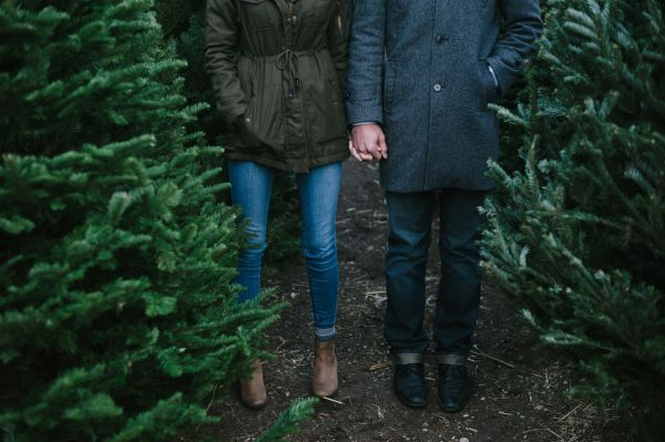 treefarmloveshoot (3)