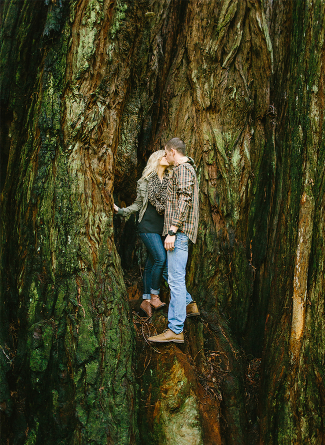 Redwood Forest Engagement Pictures